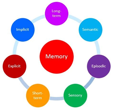 The Longest Memory - Insight Publications